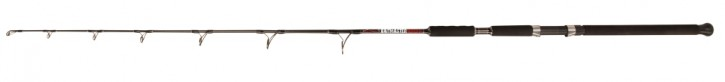 Jenzi Welsrute Siluro Special Baitmaster Vertical 1,70m 100-250g
